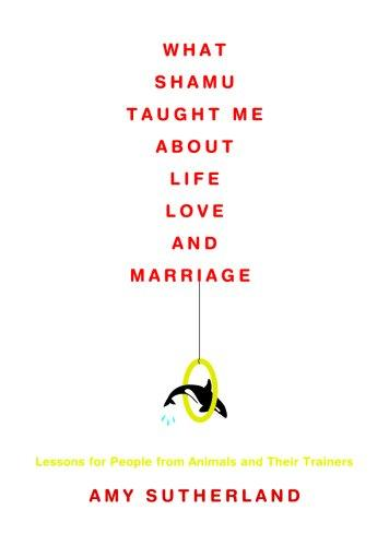 Download What Shamu Taught Me about Life, Love, and Marriage