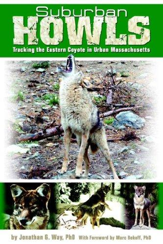 Image for Suburban Howls: Tracking the Eastern Coyote in Urban Massachusetts