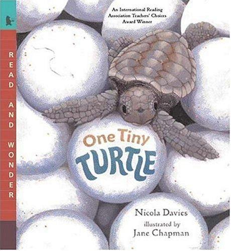 Download One Tiny Turtle