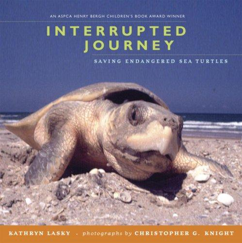 Download Interrupted Journey