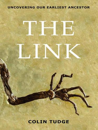 The Link