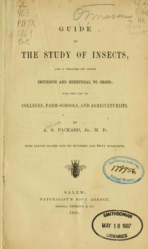 Guide to the study of insects