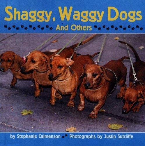 Shaggy, Waggy Dogs (and Others)