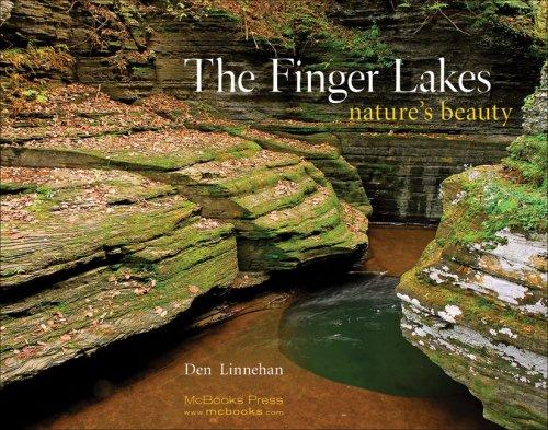 Image 0 of The Finger Lakes: Nature's Beauty