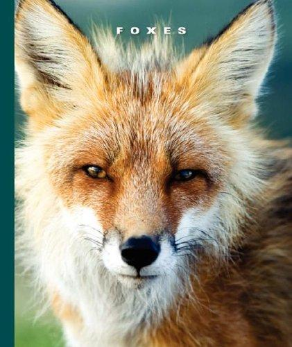 Foxes (World of Mammals) by Sophie Lockwood