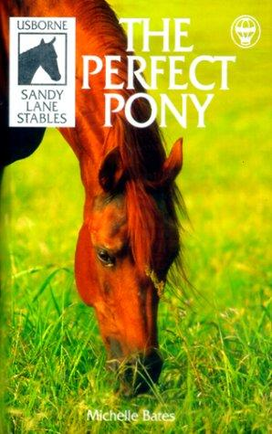 The Perfect Pony (Sandy Lane Stables)